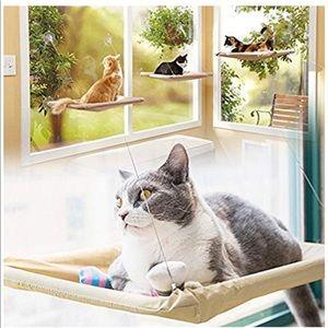 Cat Hammock 🐱